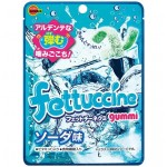 Fettuccine Soda 50 Gr x 10